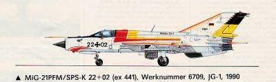 Weisser Hai 1